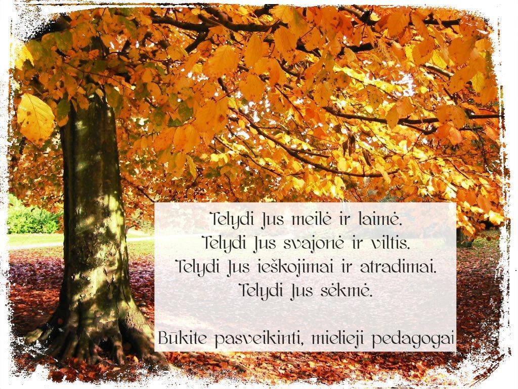 mokyt.diena